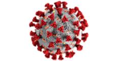 Coronavirus e la lezione dei media
